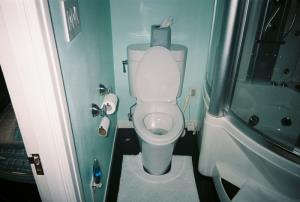 Toto skirted toilet.