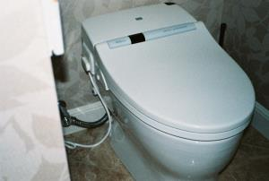Toto Neo Rest toilet. It has a bidet feature and automatic flush.